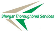 Shergar Thoroughbred Services